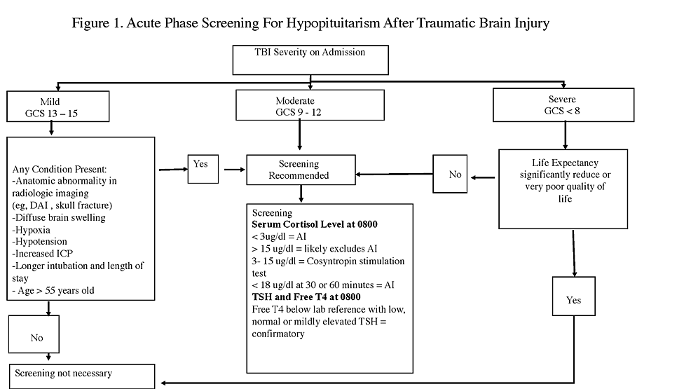 Acute-Phase-Screening-for-Hypopituitarism-After-Traumatic-Brain-Injury