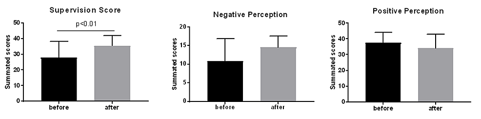 Composite-scores-for-supervision;-positive-and-negative-perception-of-supervision