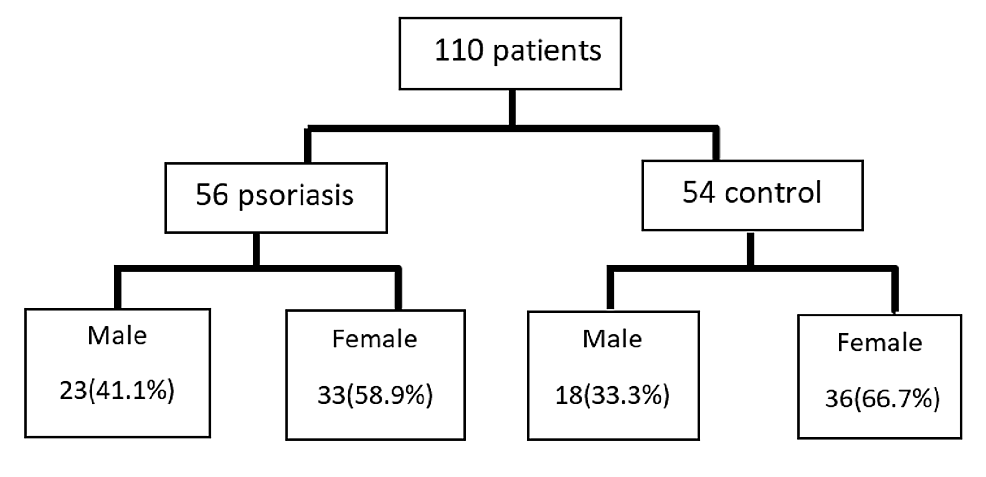 Scheme-of-the-patients-enrolled-in-the-study