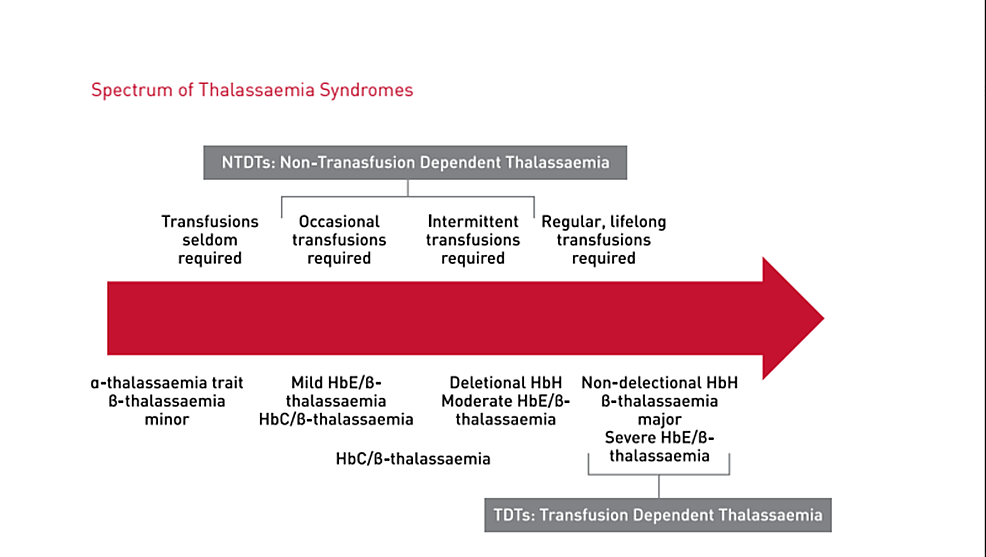 Spectrum-of-thalassemia-syndromes