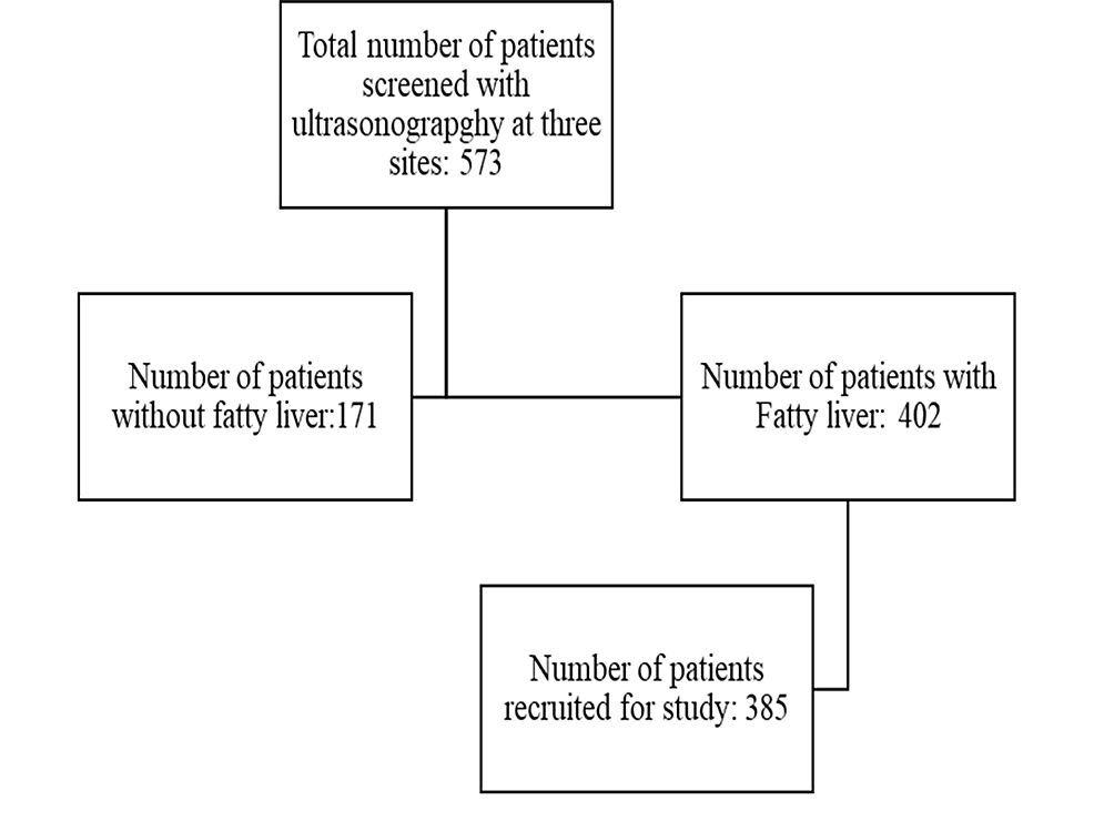 Process-of-recruitment-of-participants-in-the-study