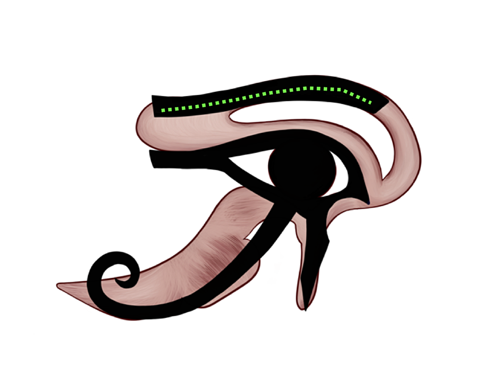 Wisdom/thoughts-representation-on-the-Eye-of-Horus