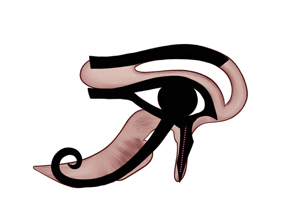 Touch-representation-on-the-Eye-of-Horus
