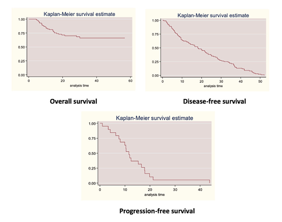 Overall-survival,-disease-free-survival,-and-progression-free-survival-within-the-cohort-of-patients-diagnosed-with-TNBC-at-the-NCI-FBCU.