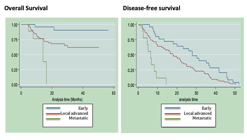 Overall-survival-and-disease-free-survival-in-relation-to-clinical-stage-within-the-cohort-of-patients-diagnosed-with-TNBC-at-the-NCI-FBCU.