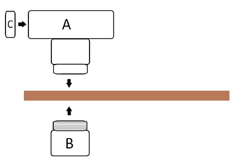 Diagram-of-pelvic-model-assembly