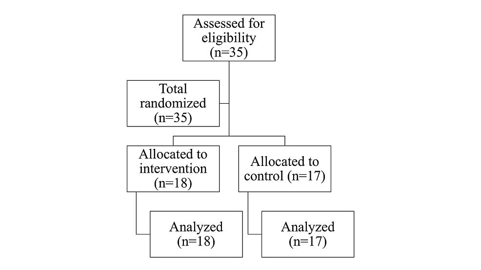 Participant-flow-diagram