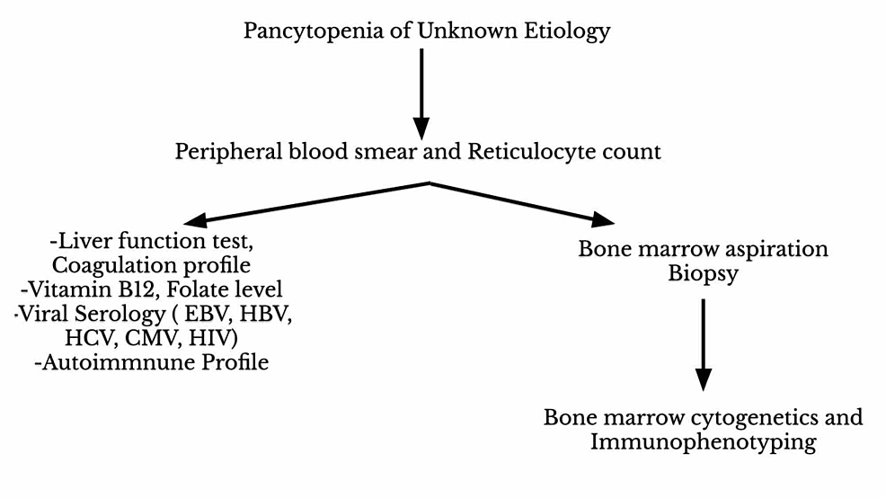 Diagnostic-approach-for-patients-presenting-with-pancytopenia-of-unknown-etiology.