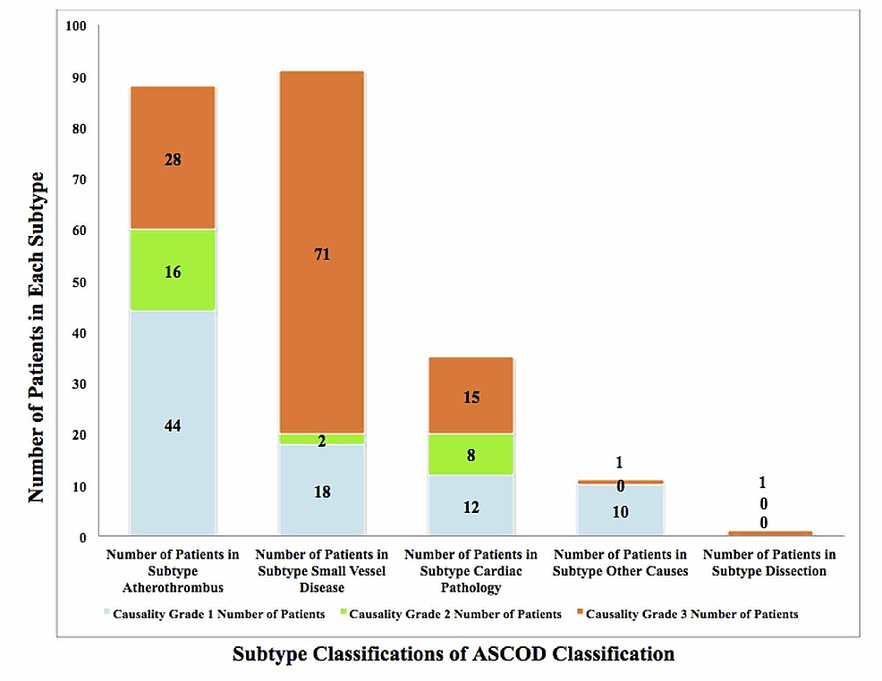 ASCOD-Classification-of-Stroke-Patients-in-the-Study