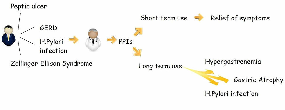 PPI-and-its-effects-of-short-term-and-long-term-use