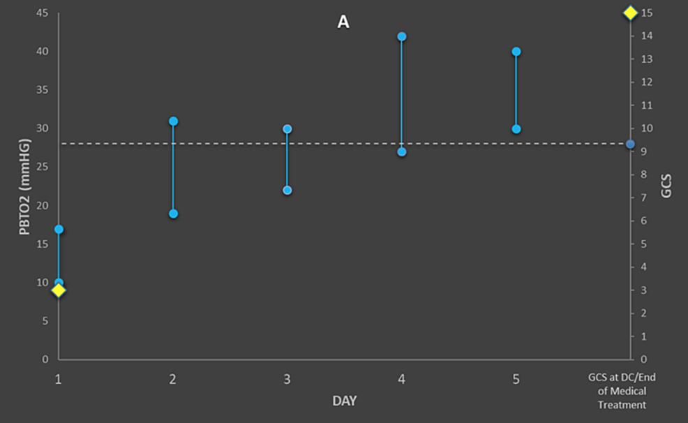 Graph-for-Patient-A,-demonstrating-maximum-and-minimum-PbtO2-levels-above-the-pre-defined-28-mmHg-threshold-(dotted-line)