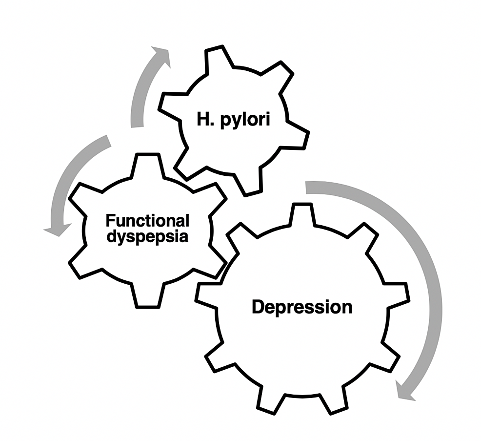 The-inter-relationships-between-depression,-H.-pylori-infection,-and-functional-dyspepsia