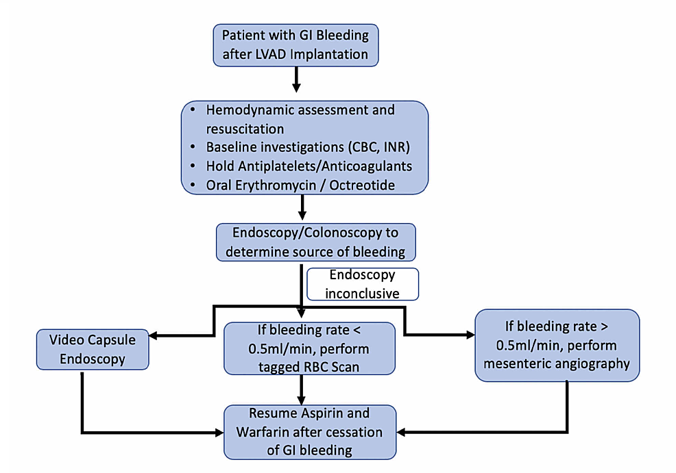 Flowsheet-outlining-the-management-approach-to-GI-bleeding-in-patients-with-LVAD-placements