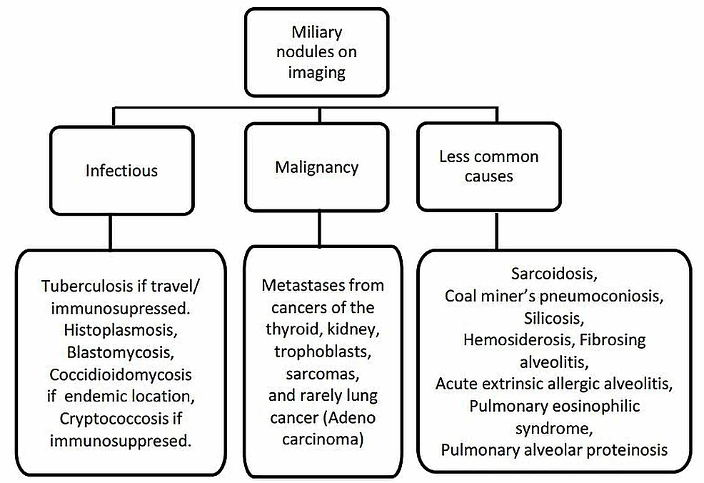 Differential-diagnosis-of-miliary-nodules-on-imaging