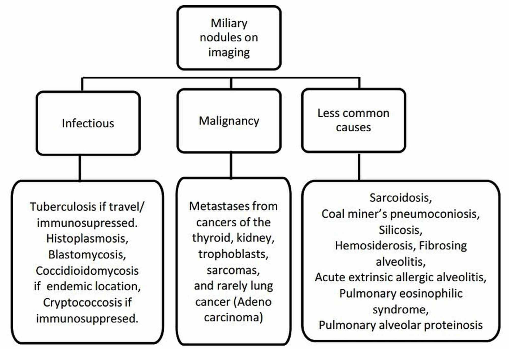 Cureus Adenocarcinoma Of The Lung Presenting With Intrapulmonary Miliary Metastasis