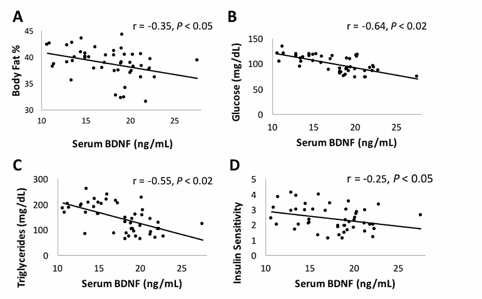 Correlation-between-circulating-BDNF-serum-levels-and-cardio-metabolic-health-markers.