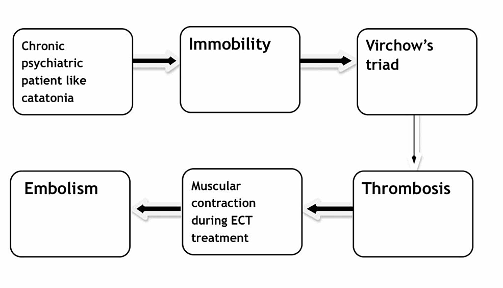 Flowsheet-describing-the-occurrence-of-thromboembolism-with-electroconvulsive-therapy-(ECT)-treatment-in-schizophrenia-with-catatonia-patient