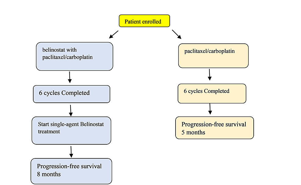 Flow-chart-showing-progression-free-survival-on-treatment-with-and-without-belinostat