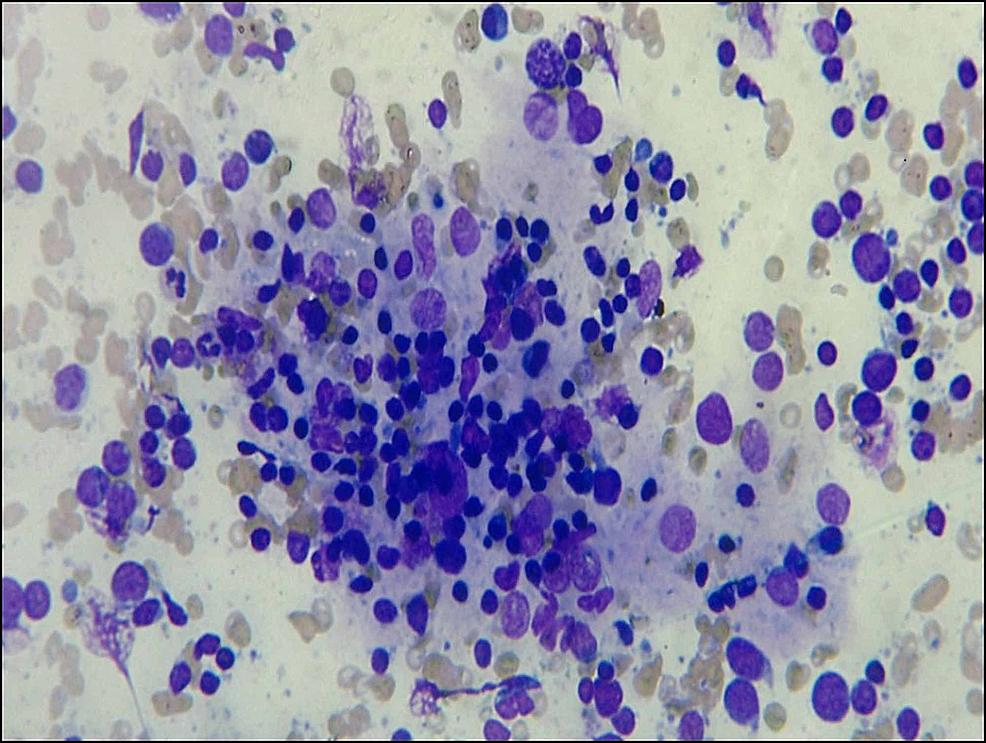 Cytology-image