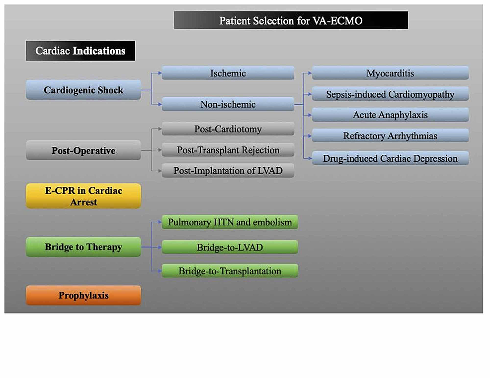 Patient-selection-for-VA-ECMO-therapy.