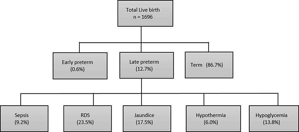 Frequency-and-early-complications-of-late-preterm-infants