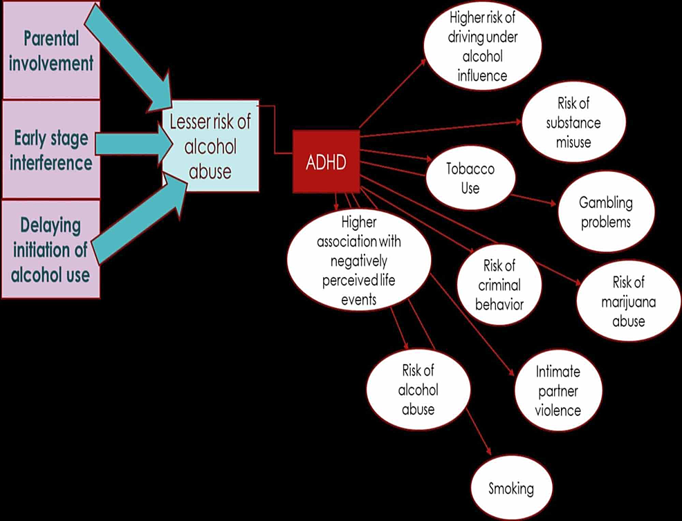 The-picture-shows-the-relation-between-ADHD-and-the-risks-associated