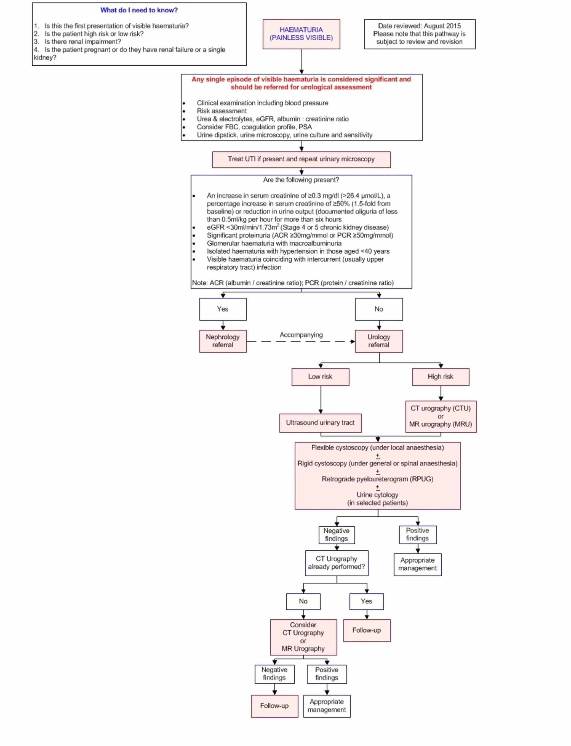 Cureus | Painless Visible Haematuria in Adults: An Algorithmic Approach  Guiding Management