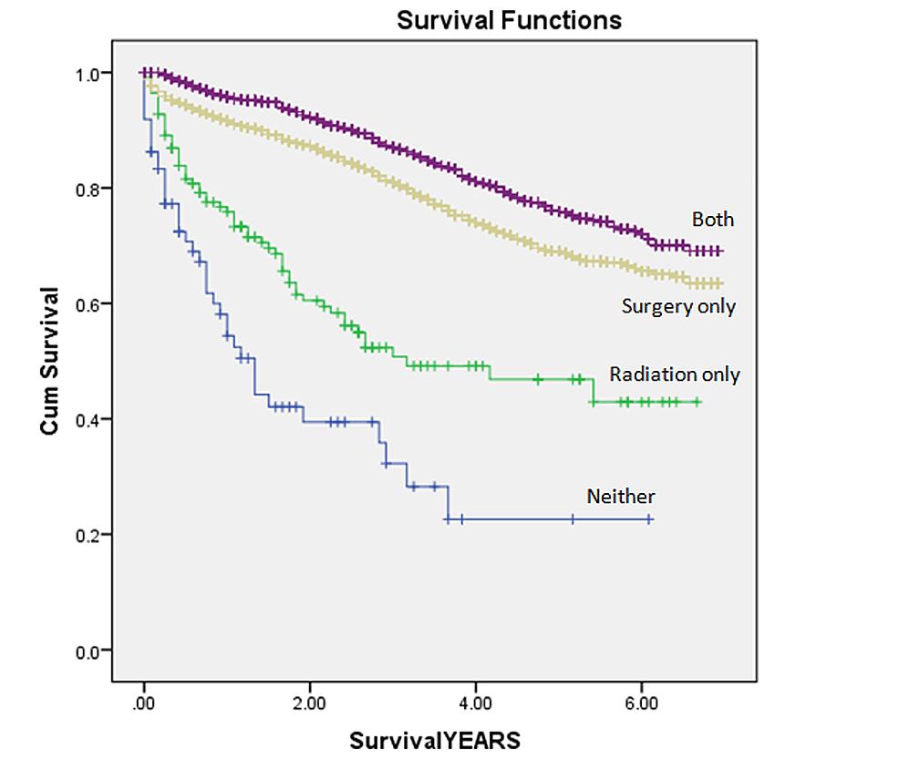 Kaplan-Meier-curves-