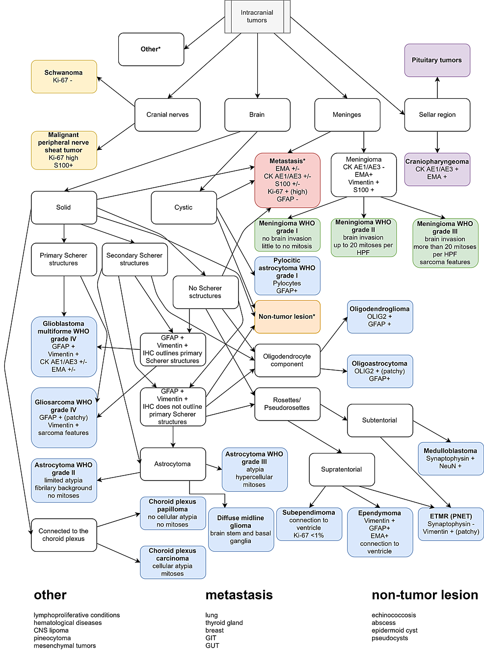 Diagnostic-algorithm-based-on-gross-and-histological-features,-with-key-IHC-markers