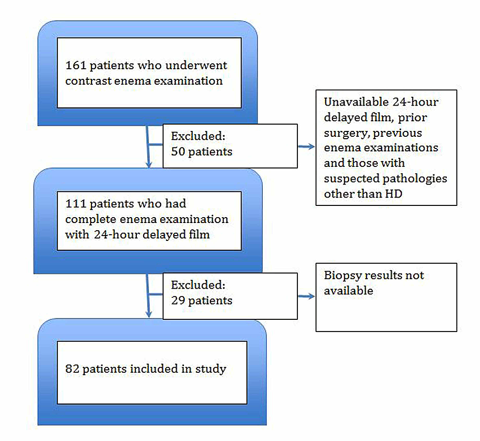 Flow-chart-depicting-the-inclusion-of-patients-in-the-study