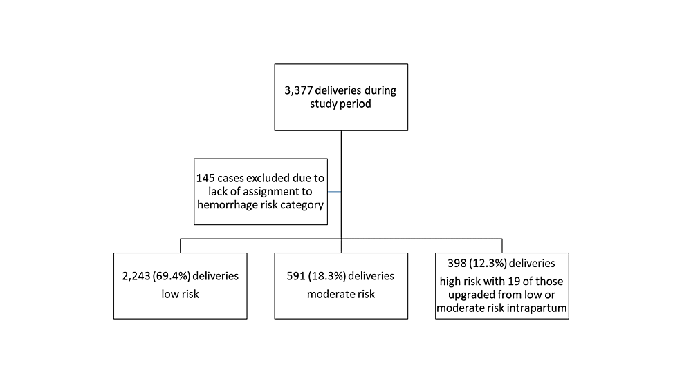 Flow-sheet-for-obstetric-risk-stratification