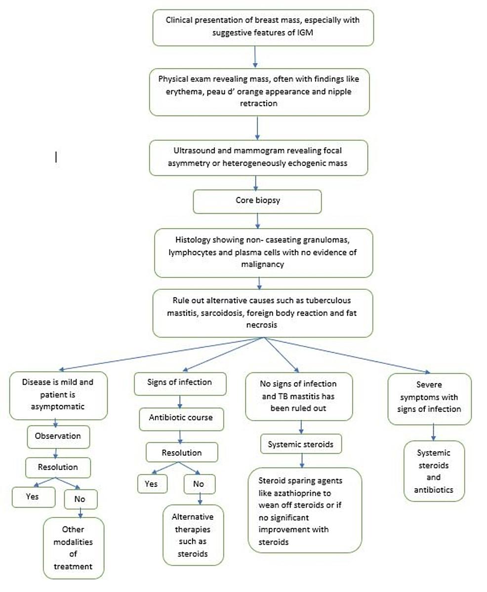 Proposed-algorithm-for-the-management-of-idiopathic-granulomatous-mastitis-