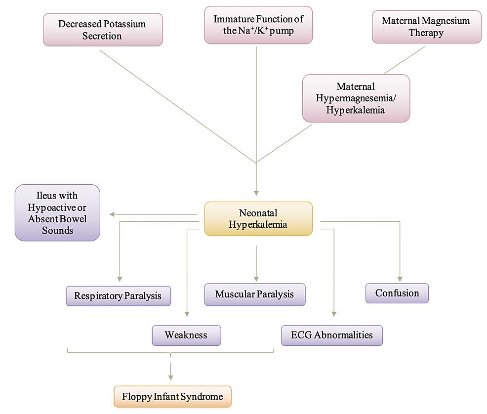 Manifestation-and-Pathogenesis-of-Neonatal-Hyperkalemia-