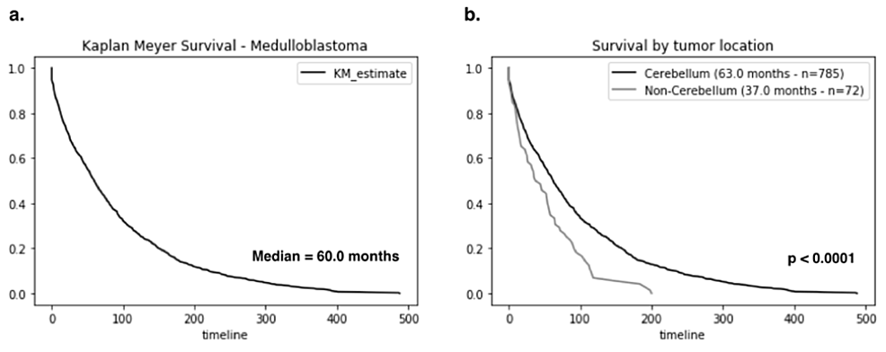 Overall-survival-of-adult-patients-with-medulloblastoma.