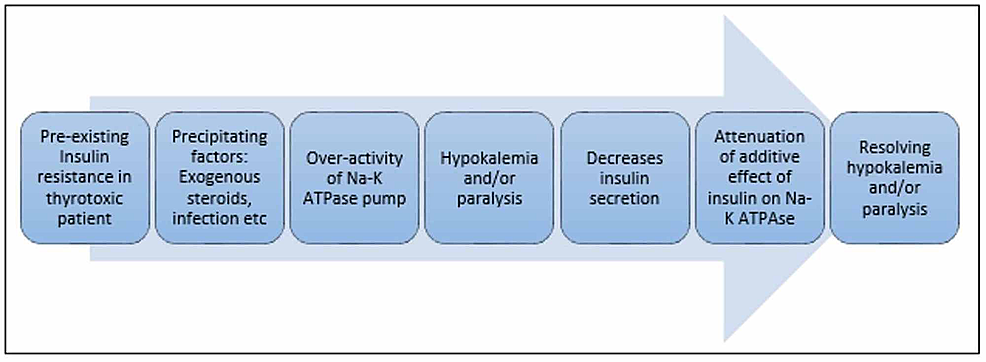 The-algorithm-for-'self-limiting'-hypokalemia-in-patients-with-thyrotoxicosis