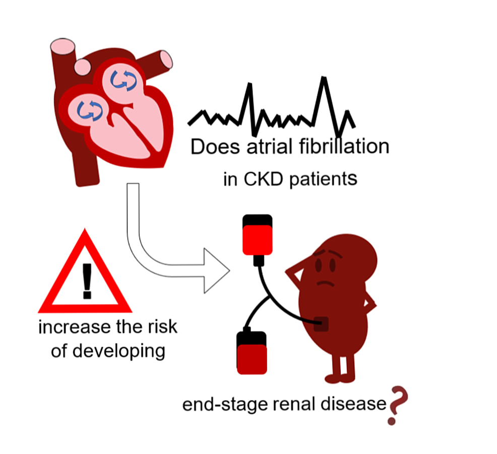 Cureus Does Atrial Fibrillation Increase The Risk Of Developing End Stage Renal Disease In Patients With Chronic Kidney Disease