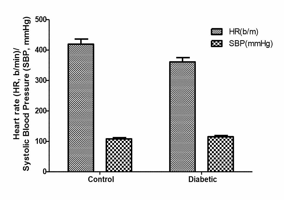 Effects-of-olive-oil-(1-ml/kg-p.o)-on-heart-rate-(HR-b/m)-and-systolic-blood-pressure-(SBP;-mmHg)-in-normal-(control)-and-diabetic-rats