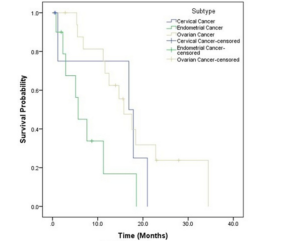 Survival-Based-on-Subtype