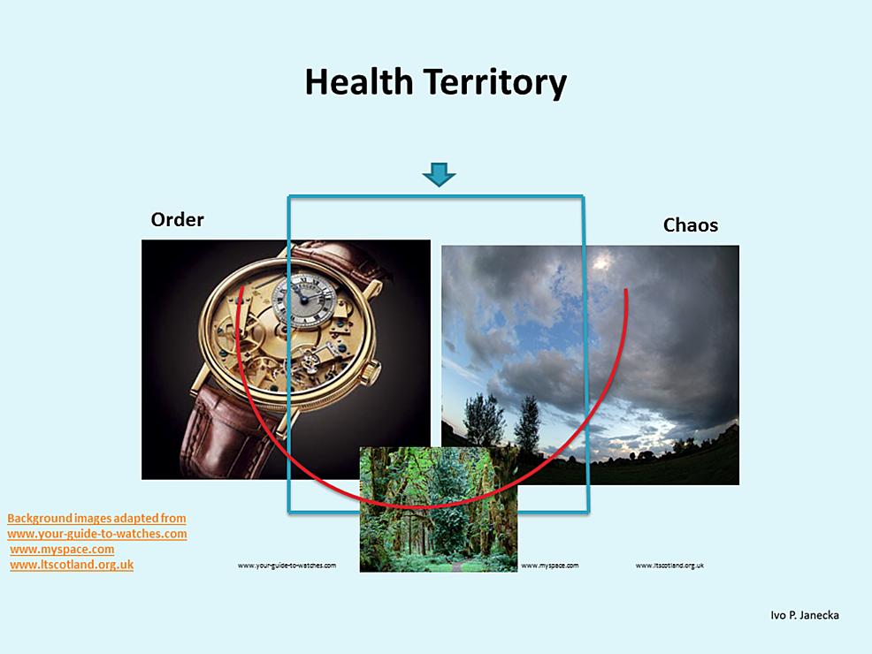 Dynamic-Systems-Model:-Health-Territory-Visual-Schema.