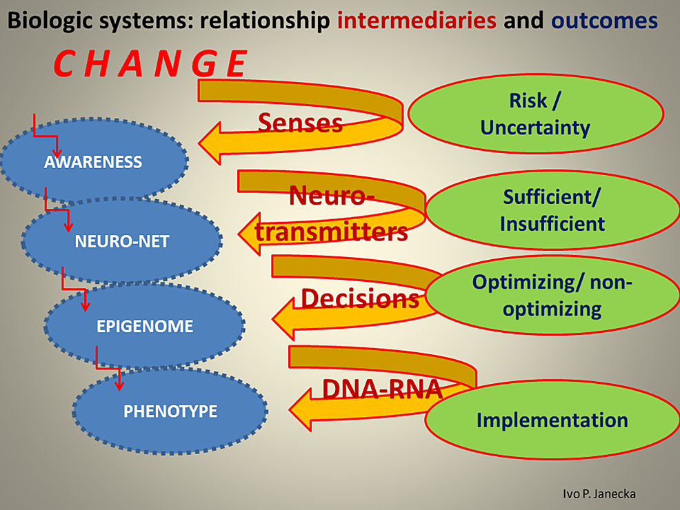 Options-That-May-Activate-Systems'-Paths.
