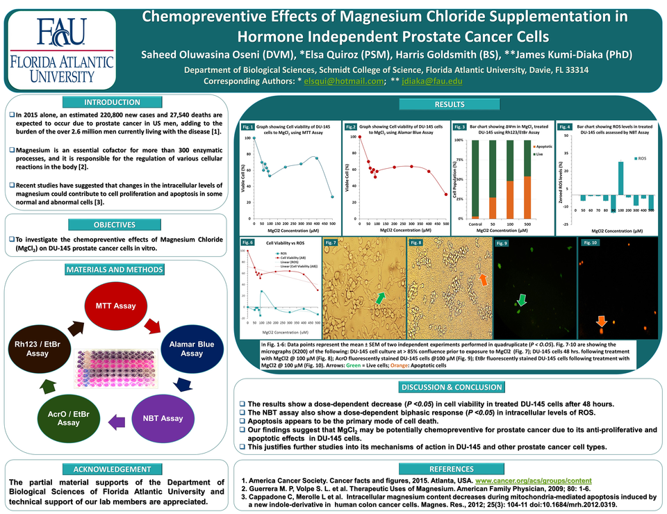 Preview final magnesium e poster template