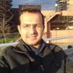 Muhammad A. Zaman