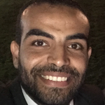 Mahmoud S. Badry